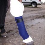 Travel bandage